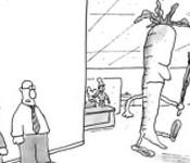 Webinar9-BehaviorChange-May15-CarrotStick